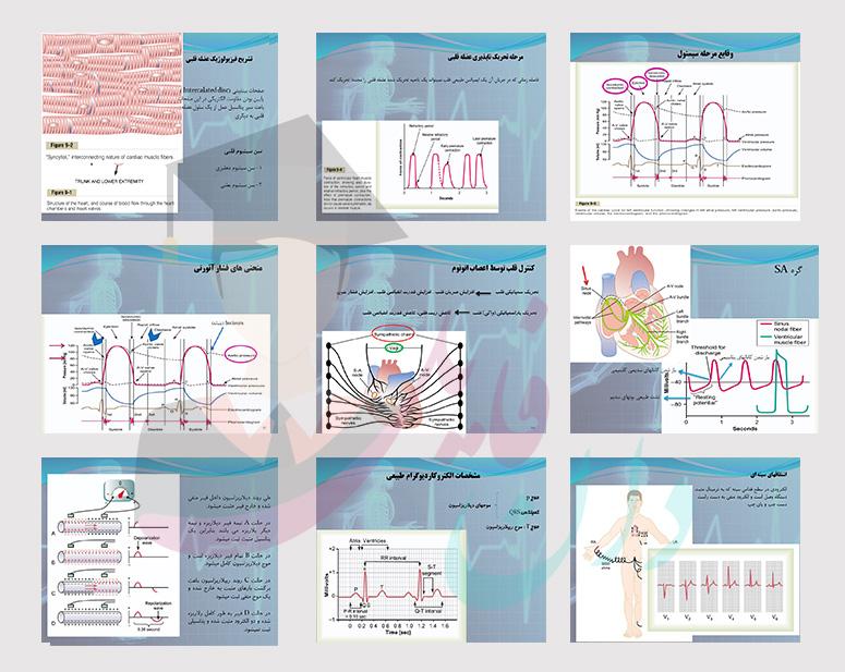 پاورپوینت قلب و EKG فیزیولوژی گایتون
